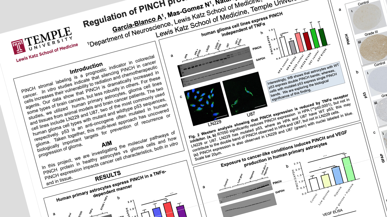 Alvaro Garcia research poster