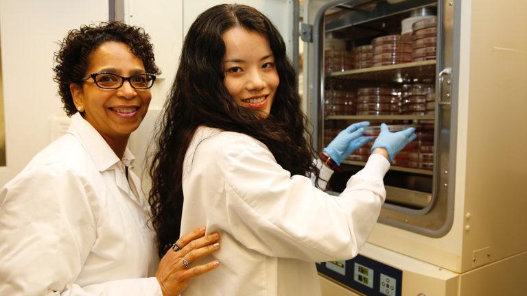 students working in Belfer lab