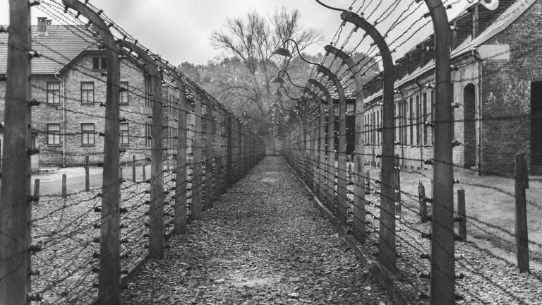 stock image of a concentration camp.