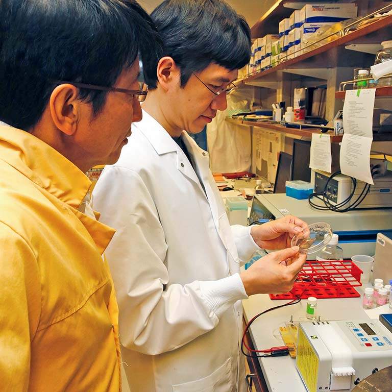 matsui in lab