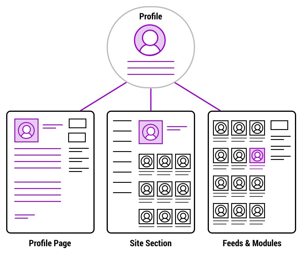 Diagram of how people content populates website