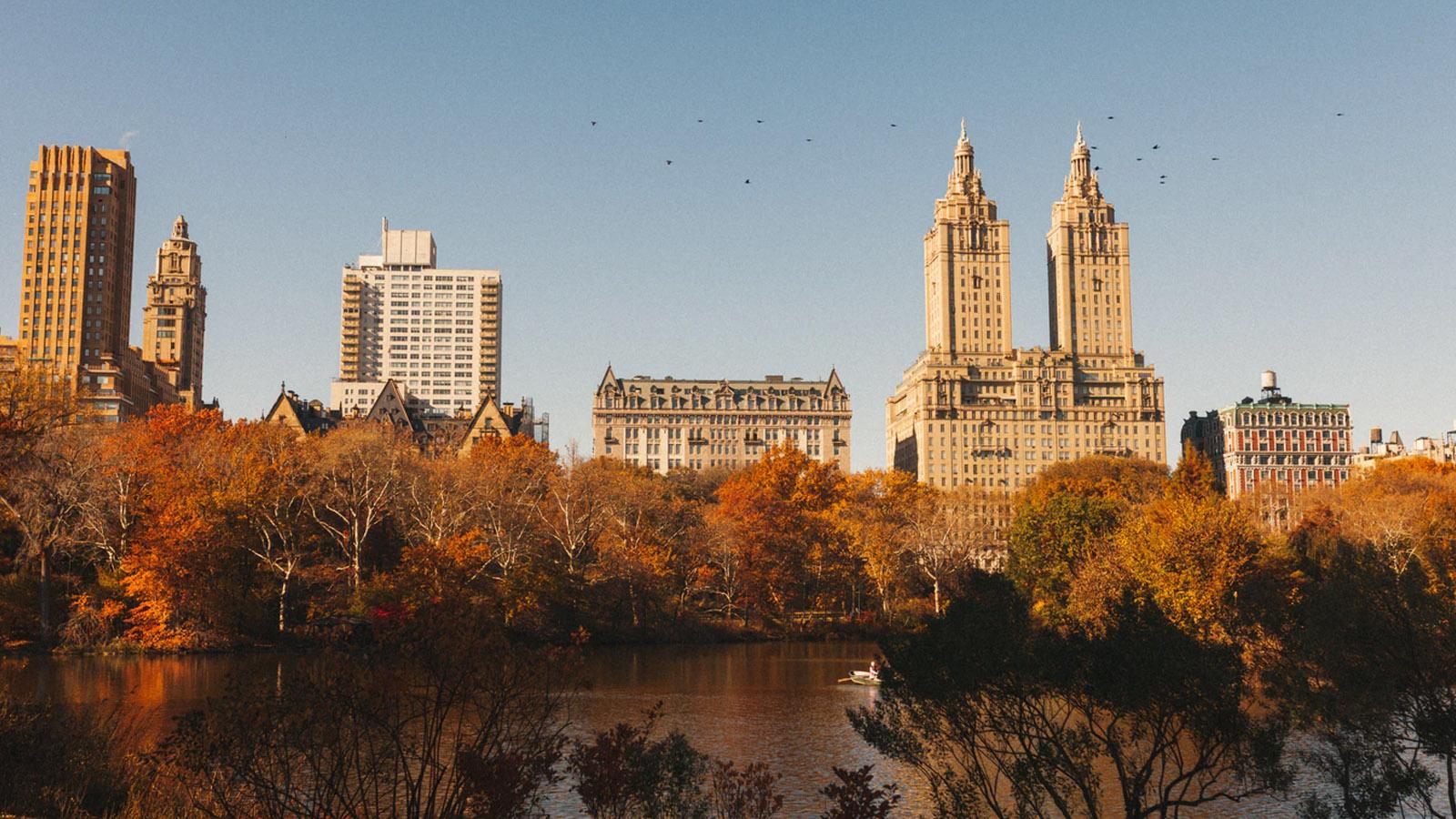 NYC Park